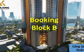 Block B – Alpha Hill Cống Quỳnh Q1